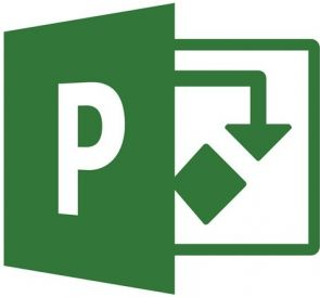 Microsoft Project Server 2019 - Licentie